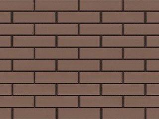 BRAER Светло-коричневый, гладкий 0,7 НФ