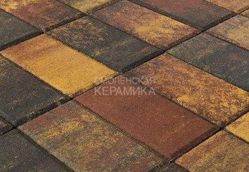 Тротуарная плитка BRAER Прямоугольник Color Mix Мальва, 40 мм 1